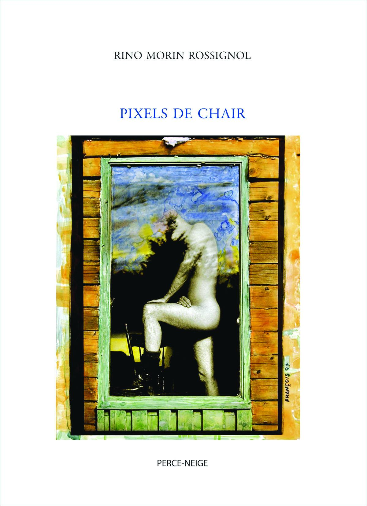 Pixels de chair Image 1